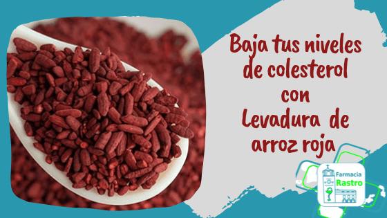 Baja tus niveles de colesterol con levadura de arroz roja